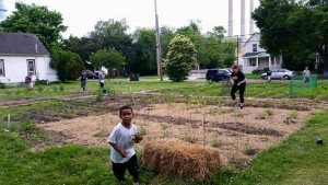 REO Grand Garden-planting